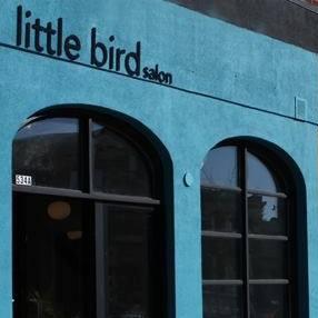 LITTLE BIRD SALON Logo